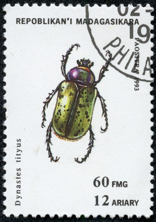 MADAGASCAR - CIRCA 1993  stamp printed by Madagascar, shows insect, circa 1993 Stock Photo - 17249320