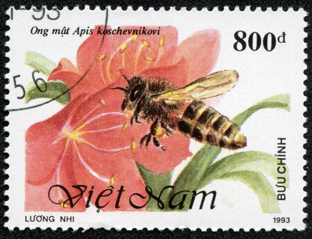 VIETNAM - CIRCA 1993  A stamp printed in Vietnam shows bee and flower, circa 1993 photo