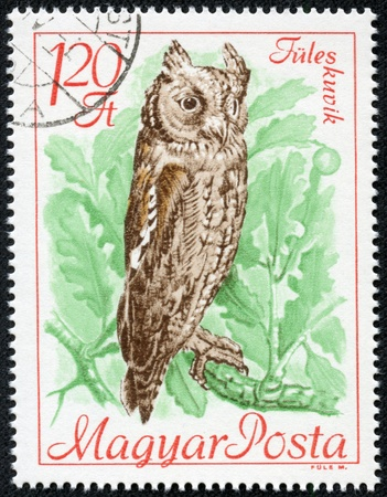 floccus: HUNGARY - CIRCA 1968  stamp printed by Hungary, shows Scops owl, circa 1968