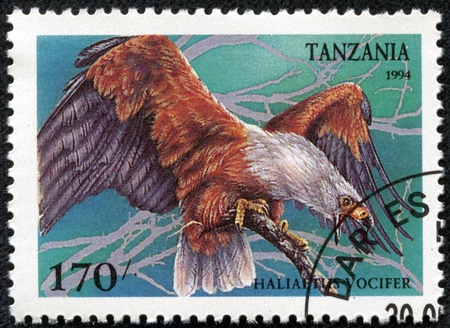 TANZANIA - CIRCA 1994  Postage stamps printed in Tanzania has shown African Fish Eagle  Haliaeetus vocifer , circa 1994 Stock Photo - 17308750
