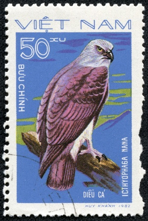 nana: VIETNAM - CIRCA 1982  A Stamp shows image of a Eagle with the inscription  Icthyophaga nana  from the series  Birds of prey , circa 1982