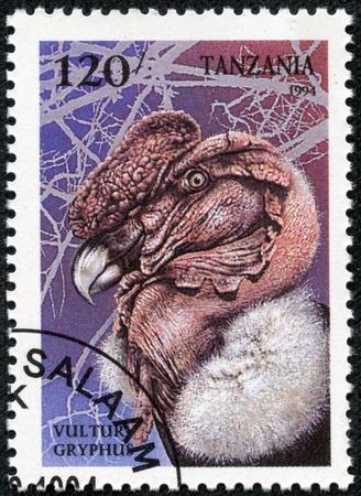 TANZANIA - CIRCA 1994  A stamp printed in Tanzania, shows bird Andean Condor  Vultur Gryphus , series, circa 1994 Stock Photo - 17308808