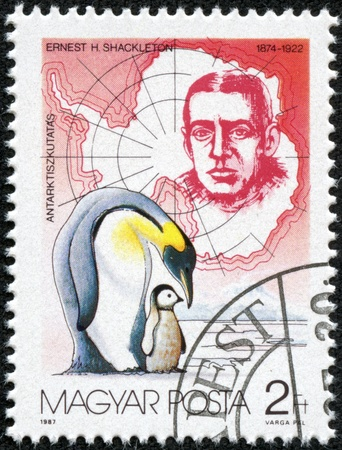 ernest: HUNGARY - CIRCA 1987  stamp printed by Hungary, shows Ernest H  Shackleton and Penguins, circa 1987 Editorial