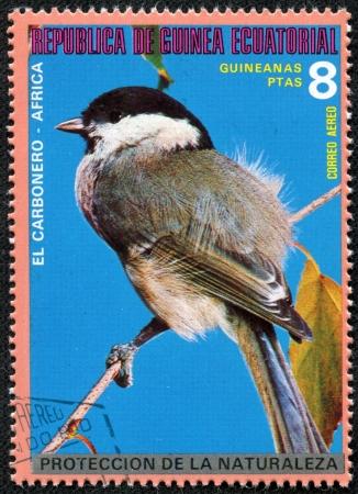 赤道ギニア - 赤道ギニアによって印刷される 1980年スタンプ年頃 1980年年頃の熱帯鳥は示しています 写真素材