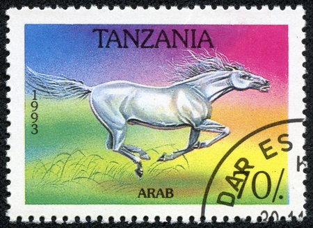 TANZANIA - CIRCA 1993  A stamp printed in Tanzania shows Arab horse, circa 1993 Stock Photo - 17472312