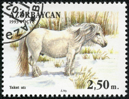 paddock: AZERBAIJAN - CIRCA 1993  A stamp printed in Azerbaijan shows a white horse standing in a pasture, circa 1993  Stock Photo