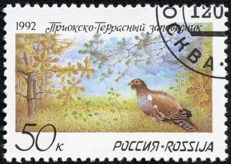 commemorative: RUSSIA - CIRCA 1992  A stamp printed in Russia shows painting of bird in forest, circa 1992