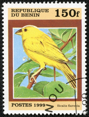 BENIN - CIRCA 1999  stamp printed by Benin, shows bird, circa 1999  photo