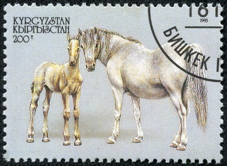 filly: KYRGYZSTAN - CIRCA 1995  A stamp printed in Kyrgyzstan showing horse with filly, circa 1995