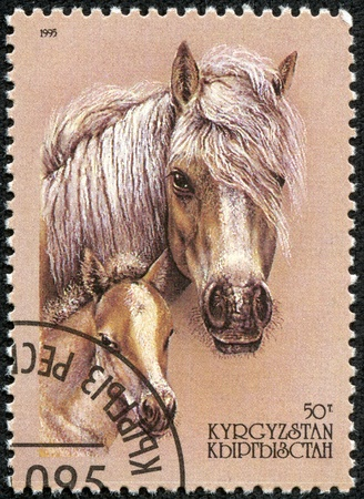 filly: KYRGYZSTAN - CIRCA 1995  A stamp printed in Kyrgyzstan shows horse with filly, circa 1995 Stock Photo