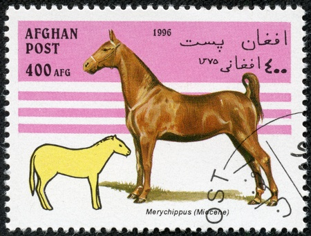prehistorical: AFGHANISTAN - CIRCA 1996  A stamp printed in Afghanistan showing prehistorical horse, circa 1996 Stock Photo