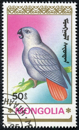 MONGOLIA - CIRCA 1990  stamp printed by Mongolia, shows parrot, circa 1990 Stock Photo - 17455632