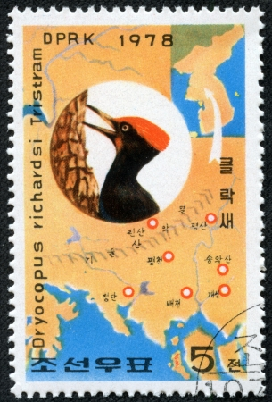 KOREA - CIRCA 1978  A stamp printed in North Korea shows Woodpecker and map of habitat with inscription  Dryocopus javensis richardsi , series  White-bellied Black Woodpecker Preservation , circa 1978 Stock Photo - 17455631