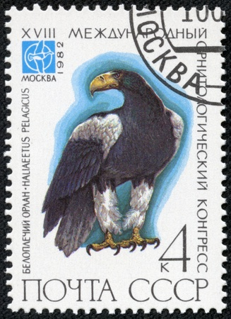congress: USSR - CIRCA 1982  A stamp printed in USSR  Russia  shows birds, series  XVIII International Ornithological Congress, Moscow, 1982 , circa 1982