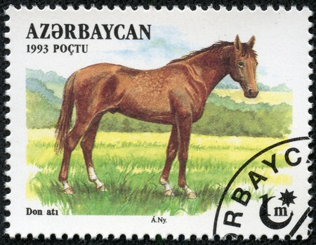 AZERBAIJAN - CIRCA 1993  A stamp printed in Azerbaijan shows a brown, Akhal-Teke Akhaltekin breed horse standing in a pasture, circa 1993  Stock Photo - 17560836