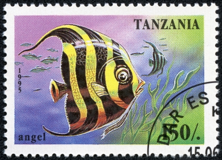 TANZANIA - CIRCA 1995  A stamp printed in Tanzania showing Angelfish, circa 1995 Stock Photo - 17920395