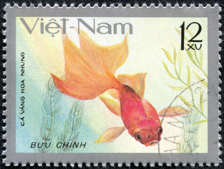 aquarian: VIET NAM - CIRCA 1977  stamp printed by Viet Nam, shows Goldfish, circa 1977