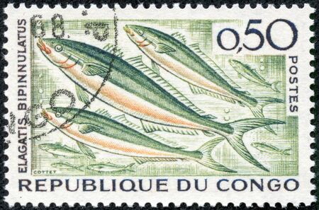 CONGO - CIRCA 1966  stamp printed by Congo, shows fish, circa 1966
