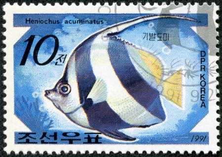 DPR KOREA - CIRCA 1991  A stamp printed by DPR KOREA  North Korea  shows a fish  Heniochus acuminatus , stamp is from the series  Tropical fishes  circa 1991