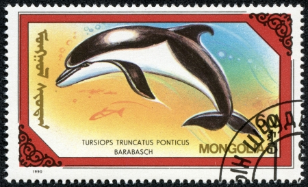 MONGOLIA - CIRCA 1990  stamp printed by Mongolia, shows dolphin, whale, water, circa 1990