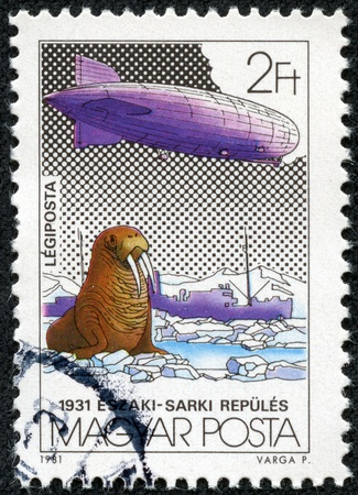 graf: HUNGARY - CIRCA 1981  A stamp printed by Hungry, shows Graf Zeppelin Flights, circa 1981
