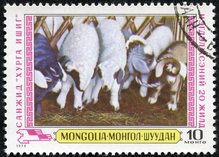 MONGOLIA - CIRCA 1979  A stamp printed in MONGOLIA shows the Agriculture Mongolia circa 1979  Stock Photo - 18535471