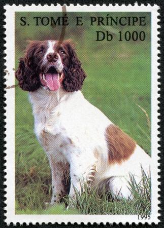S  TOME E PRINCIPE - CIRCA 1995  A stamp printed in S  Tome e Principe showing dog and cats, circa 1995