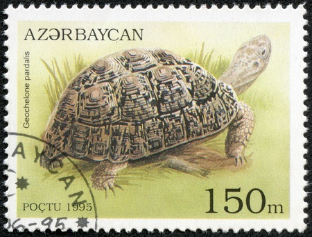 ranges: AZERBAIJAN - CIRCA 1995  A stamp printed in Azerbaijan shows a Leopard Tortoise, Geochelone pardalis, in a marshy environment  It ranges from Sudan to South Africa, circa 1995  Stock Photo