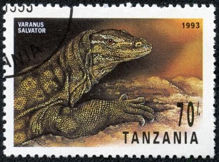 salvator: TANZANIA - CIRCA 1993  A stamp printed in Tanzania shows Varanus Salvator, circa 1993