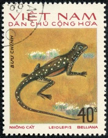 lacerta: VIETNAM - CIRCA 1983  A stamp printed in Vietnam shows animal reptile, circa 1983