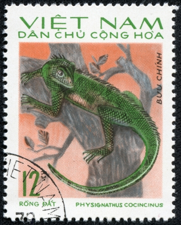 postmail: VIETNAM - CIRCA 1983  A stamp printed in Vietnam shows animal reptile, circa 1983