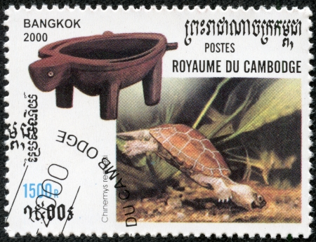 chinese postage stamp: CAMBODIA - CIRCA 2000  A stamp printed in Cambodia shows and endangered Chinese Pond Turtle, Chinemys reevesii, swimming  Also known as Reeve s, Golden, or Japanese Coin Turtle, circa 2000