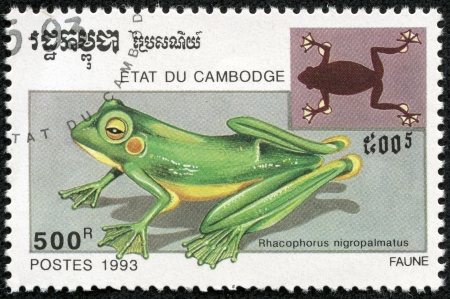 crouching: CAMBODIA - CIRCA 1993  A stamp printed in Cambodia shows Wallace s Flying Frog, Rhacophorus Nigropalmatus  Also known as the Abah River Flying Frog, circa 1993