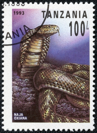 TANZANIA - CIRCA 1993  A stamp printed in Tanzania shows naja oxiana, circa 1993 Stock Photo - 20344100