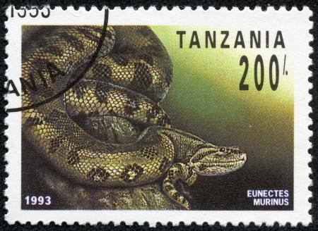 TANZANIA - CIRCA 1993  A stamp printed in Tanzania shows eunectes murinus, circa 1993 photo