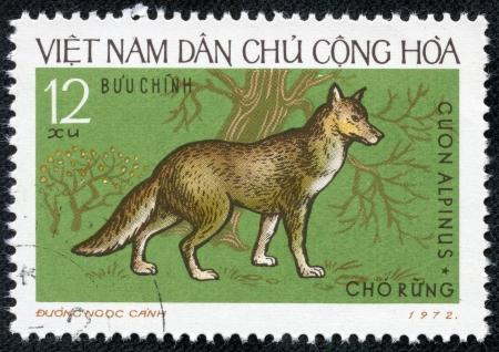 viet nam: VIETNAM - CIRCA 1972  A stamp printed in Vietnam showing Dhole, circa 1972
