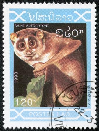 philatelic: LAOS - CIRCA 1993  A stamp printed by Laos, shows Lemur, circa 1993