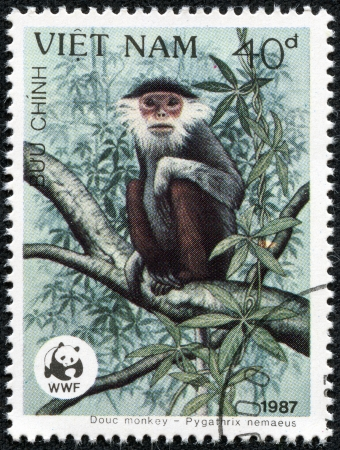 VIETNAM - CIRCA 1987  A stamp printed in Vietnam shows Douc monkey -Pygathrix nemaeus, circa 1987 Stock Photo - 20289342