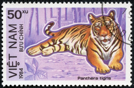 VIETNAM - CIRCA 1984  A stamp printed in Vietnam shows Panthera tigris or tiger, series is devoted to animals endangered, circa 1984 photo