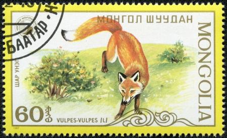 foxy: MONGOLIA - CIRCA 1987  stamp printed by Mongolia, shows fox, circa 1987