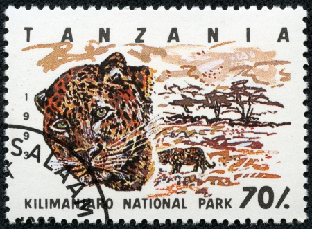 TANZANIA - CIRCA 1993  Stamp printed in Tanzania dedicated to Kilimanjaro national park, shows leopard, circa 1993 photo
