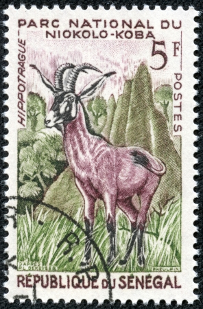 SENEGAL - CIRCA 1960  A stamp printed in Senegal shows Roan antelope  Hippotragus equinus , Niokolo-Koba National Park, circa 1960 photo