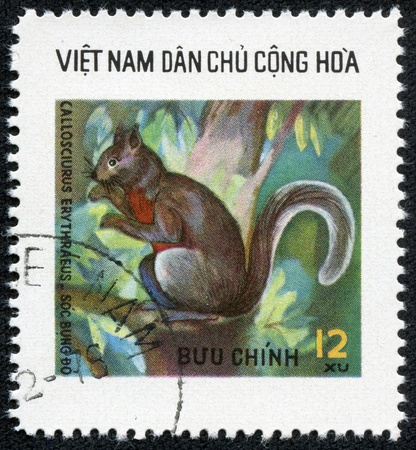 VIETNAM - CIRCA 1980  A stamp printed in Vietnam shows squirrel, series is devoted to wild animals, circa 1980 Stock Photo