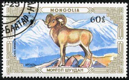rocky mountain bighorn sheep: MONGOLIA - CIRCA 1987  A stamp printed by MONGOLIA shows mountain goat, series animals, circa 1987 Stock Photo