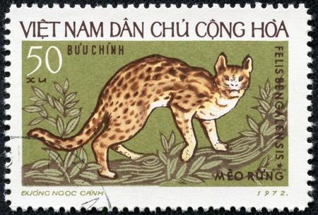 viet nam: VIETNAM - CIRCA 1972  stamp printed by Vietnam, shows wildcats circa 1972 Stock Photo