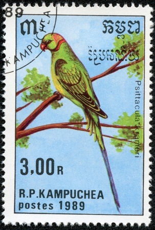 parakeet: CAMBODIA - CIRCA 1989  A stamp printed in Cambodia shows Psittacula krameri or Rose-ringed Parakeet, series is devoted to parrots, circa 1989