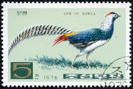 quo: KOREA - CIRCA 1976  A stamp printed in North Korea shows Lady Amherst s Pheasant, without the inscription, from the series  Pheasants  ;quo t;, circa 1976
