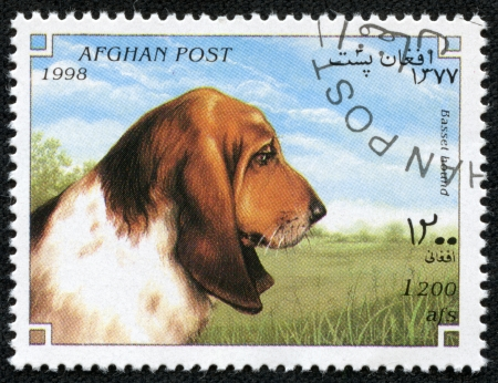 AFGHANISTAN - CIRCA 1998  A stamp printed in Afghanistan shows Dog, basset hound, circa 1998 Stock Photo - 23105698