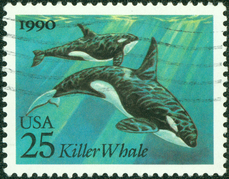 USA - CIRCA 1990  A Stamp printed in USA shows the Killer Whales, Sea Creatures series, circa 1990 photo