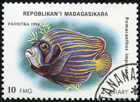 pomacanthus imperator: MADAGASCAR - CIRCA 1994 francobollo stampato in Madagascar dedicato al pesce mostra Pomacanthus imperator, circa 1994 Archivio Fotografico